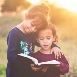 Massentierhaltung in einem Kinderbuch sorgt für Aufregung unter konventionellen Schweinezüchtern