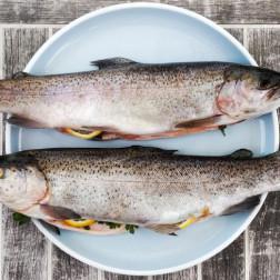 Zwei Forellen auf einem weißen Teller mit Holzhintergrund