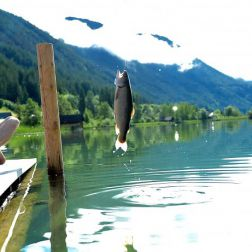 Junger Mann fischt am See