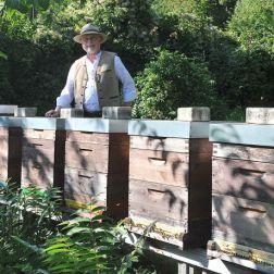 Imker vor den Bienenstöcken
