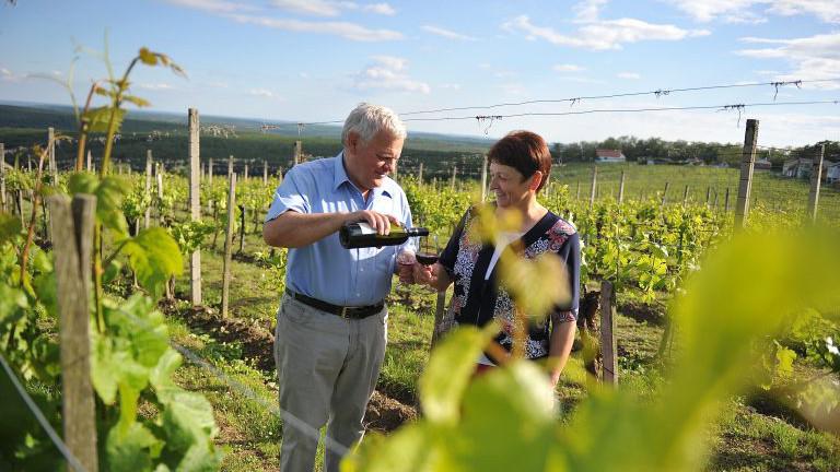 Franz und Gertrude Heiden, Weinbau Heiden, Weinidylle Südburgenland