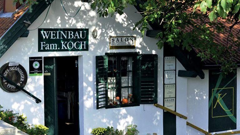 Weinbau Koch im Südburgenland. Weinidylle