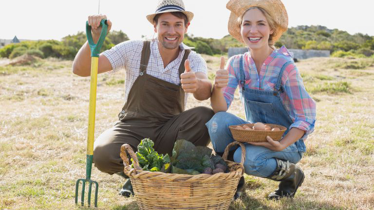 Zwei Biobauern auf einem Feld mit Gemüse
