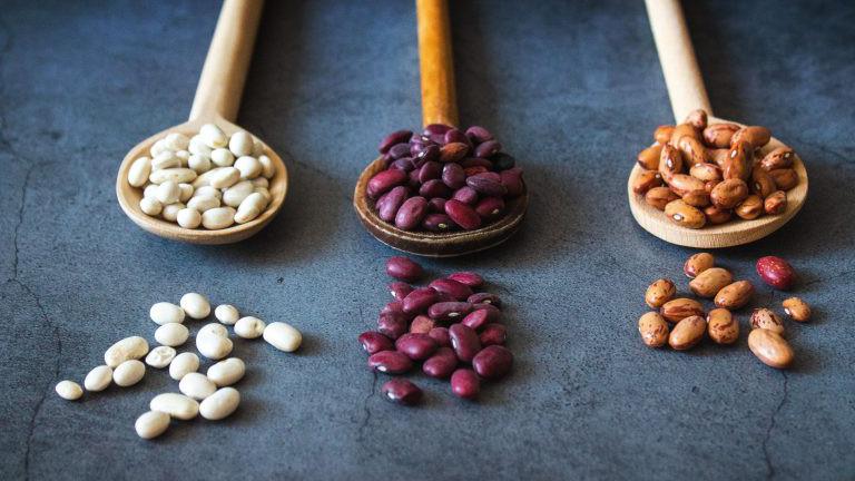 verschiedenen Bohnenarten auf Kochlöffeln.