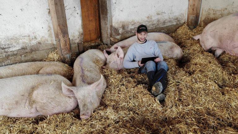 Junger Mann im Schweinestall