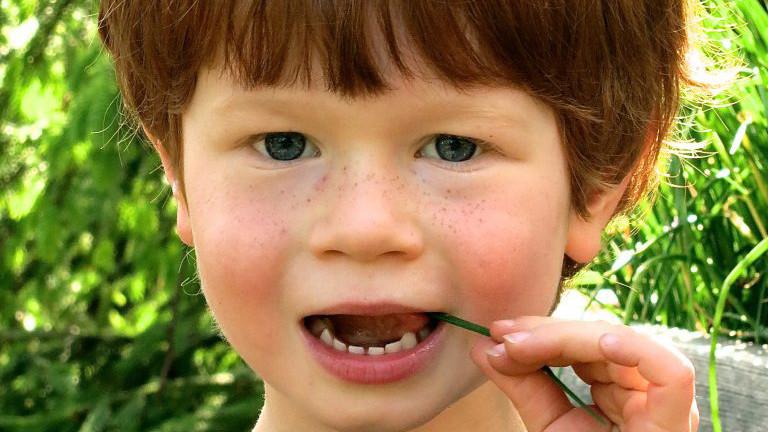 Kleiner rothaariger Junge mit Grashalm im Mund
