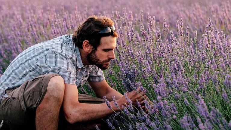 Mann im Lavendelfeld