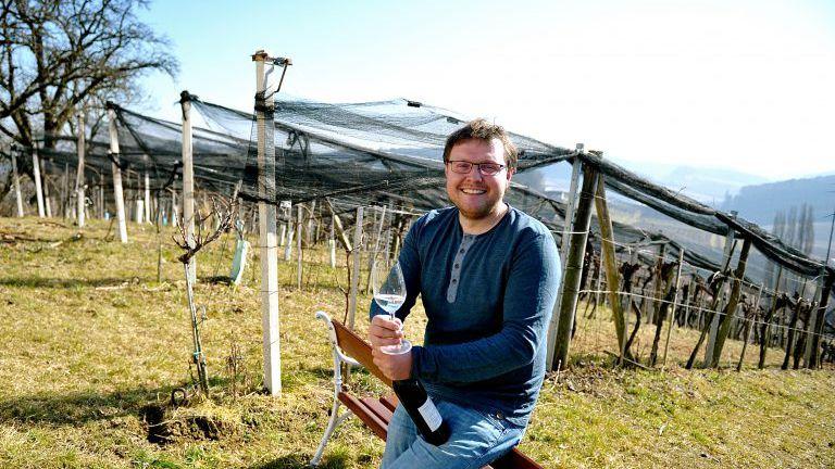Mann mit Glas Wein und Flasche im Weingarten