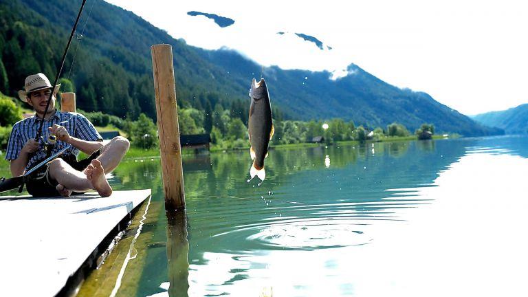 Bitte zu Fisch