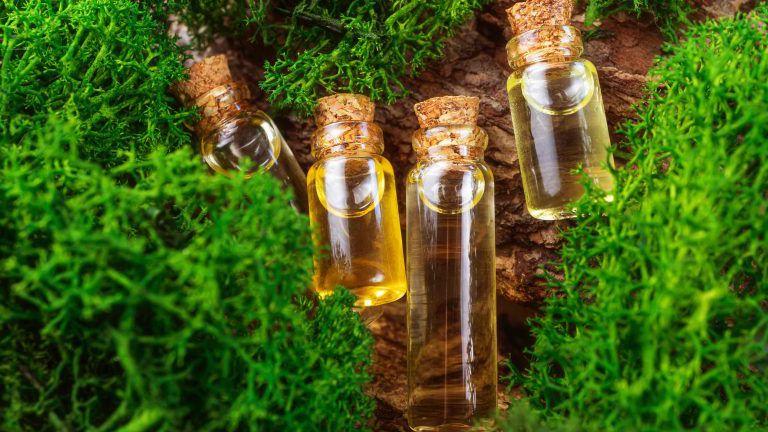 Moderne Apotheke. Natürliches ätherisches Öl auf einer Holzoberfläche, daneben Moos. Das Konzept der organischen Essenzen, natürliche Produkte für Schönheit und Gesundheit.