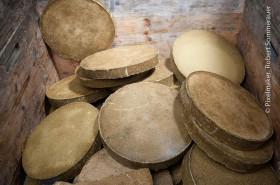JA- Kürbiskernkuchen Platten
