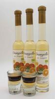 3 x  200 ml Bio - Orangello plus 2 Original Gläser gratis