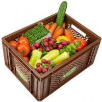 Büro Gemüse - Kistl mittel