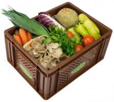 Regionales Gemüse - Kistl mittel