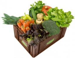Gemüse - Kistl groß