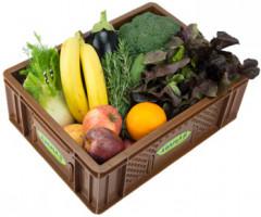 Gemüse & Obst - Kistl klein