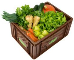 Gemüse - Kistl mittel