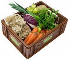 Regionales Gemüse - Kistl klein