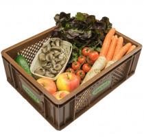 Regionales Gemüse & Obst - Kistl mini