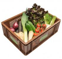 Gemüse - Kistl mini