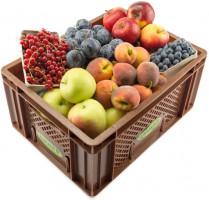Regionales Büro Obst - Kistl groß