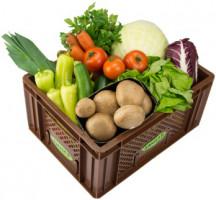 Easy Cooking Gemüse - Kistl groß