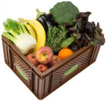 Gemüse & Obst - Kistl mittel
