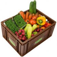 Büro Gemüse - Kistl groß