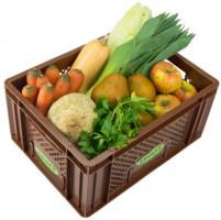 Regionales Gemüse & Obst - Kistl mittel