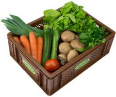 Easy Cooking Gemüse - Kistl klein