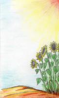 Sonnenblumenöl aus dem Marchfeld