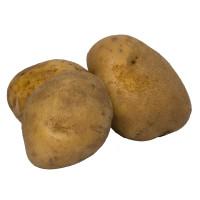 Mehlige - Kartoffel