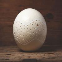 Straußen Ei Lampe Oberteil