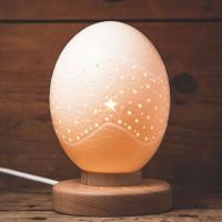 Straußen Ei Lampe