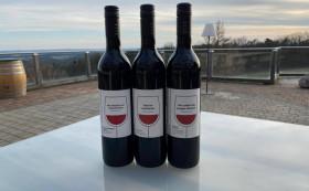 Probieren Sie unsere berauschende Vielfalt Rotweine 12 Fl.
