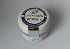 Lippenbalsam PROPOLIS