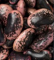 Käferbohnen roh
