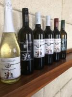 Tasty-Box (6 verschiedene 0,75 Flaschen Wein)