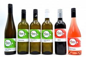 Scheiner Wein - Kennenlernpaket inkl. Versand