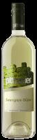 Sauvignon Blanc 2019 -15%