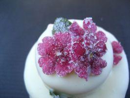 Bunte Blütentörtchen (klein)