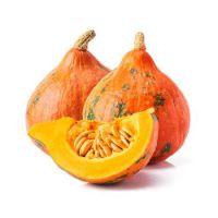 """Kürbis """"Hokkaido orange"""""""