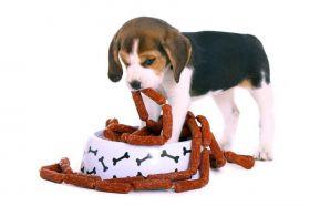 Hundefutter Putenwürstchen Art.-Nr. 992711