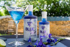 Blue-Velvet [Blue-Gin]