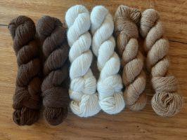 Alpaka Natur Wolle