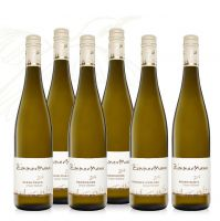 Weinpaket – Grüner Veltliner