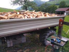 Brennholz Weich - Scheitlänge 45cm - 1 Raummeter