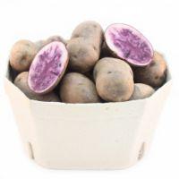 Blue Salad Potato 1kg