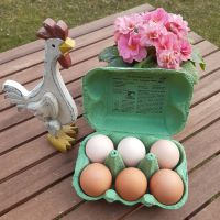 Eier Größe L