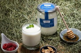 BIO Naturjoghurt